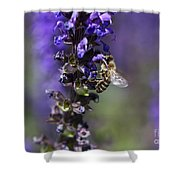 The Bee Hover Shower Curtain