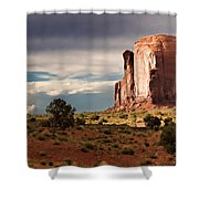 The Beer Stein Shower Curtain by Lana Trussell