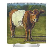 The Belted Cow Shower Curtain