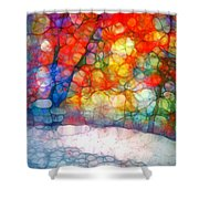 The Bench At First Snow Shower Curtain