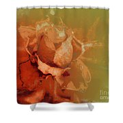The Best Days Are Over Shower Curtain