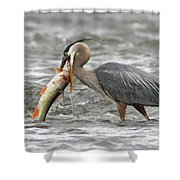 The Big Capture Shower Curtain