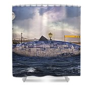 The Big Fish Shower Curtain