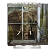 The Big Guest Shower Curtain