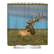 The Big Guy Resting Shower Curtain