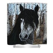 The Birch Horse Shower Curtain