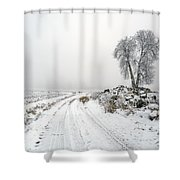 The Birch Shower Curtain