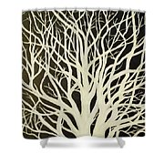 The Birch Tree Shower Curtain