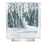 The Birch Trees Shower Curtain