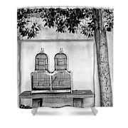 The Bird Cage Palm Springs Shower Curtain