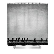 The Birds Shower Curtain