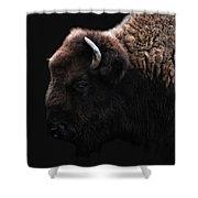 The Bison Shower Curtain by Joachim G Pinkawa