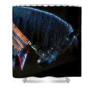 The Black Horse II Shower Curtain by Amanda Struz