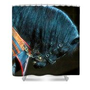 The Black Horse IIi Shower Curtain by Amanda Struz