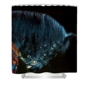 The Black Horse Iv Shower Curtain