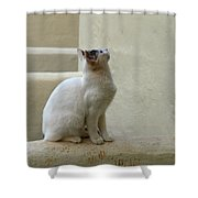 The Blond 5 Shower Curtain