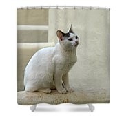 The Blond Nr 2 Shower Curtain