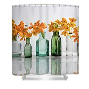 the Blooming yellow Ornithogalum Dubium in a transparent bottle instead vase Shower Curtain