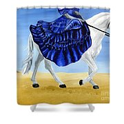 The Blue And The White - Princess Starliyah Riding Candis Shower Curtain