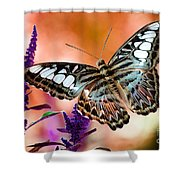 The Blue Clipper Shower Curtain by Lois Bryan