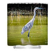 The Blue Fisherman Shower Curtain