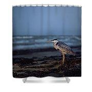 The Blue Heron Shower Curtain