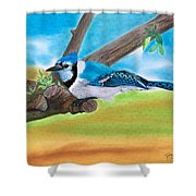 The Blue Jay  Shower Curtain