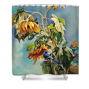 The Blue Jay Who Came To Breakfast Shower Curtain