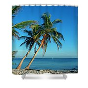 The Blue Lagoon Shower Curtain by Susanne Van Hulst