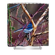 The Blue Of Winter In The Woods Shower Curtain