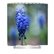 The Bluebells Of Destiny Shower Curtain