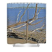The Boneyard Shower Curtain