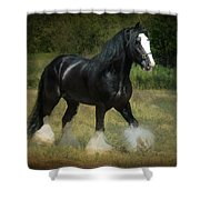 The Boss C Shower Curtain