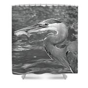 The Breadwinner II Shower Curtain