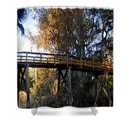 The Bridge In My Dreams Shower Curtain