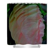 The Bud Before Bloom Shower Curtain