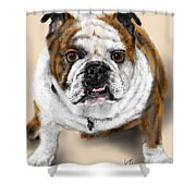 The Bull Dog Pup Shower Curtain
