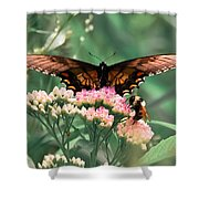 The Butterfly And The Bumblebee Shower Curtain