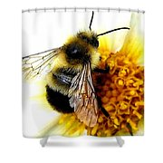 The Buzz Shower Curtain
