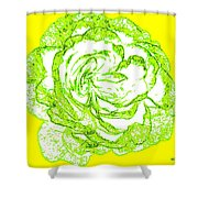 The Cabbage Rose Shower Curtain