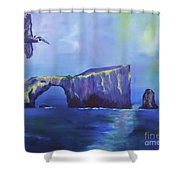 The California Brown Pelican And Acacapa Island Arch Rock Shower Curtain