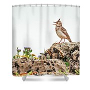 The Call Shower Curtain