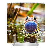 The Calling Frog Shower Curtain