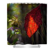 The Calling Of Fall Shower Curtain