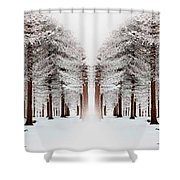 The Calm Of Winter In The Woods Shower Curtain