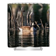 The Canada Goose Shower Curtain
