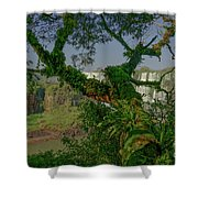 The Canopy Shower Curtain