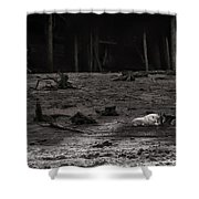 The Canyon Alphas B/w Shower Curtain