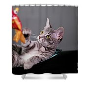The Cat And The Fish Shower Curtain