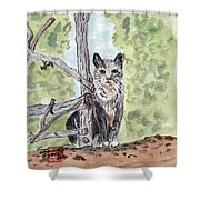 The Cat At The Fence Shower Curtain